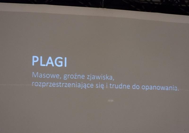 Plagi_plansza tytułowa