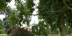 Pałac Lubostroń w parku - fot. Jacek Konopka